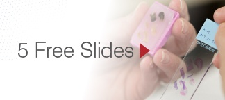 5_free_slides_web5.jpg